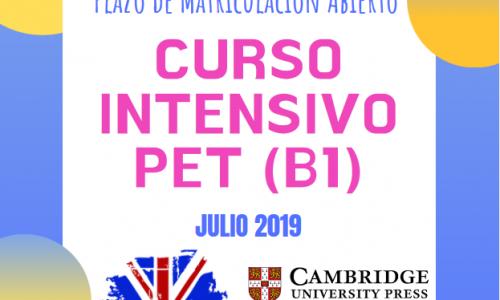 Curso intensivo B1 – Julio 2019